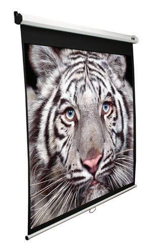 Экран ELITE SCREENS Manual M135XWH2,  299х168 см, 16:9,  настенно-потолочный белый [m135xwh2 ]