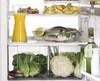 Термометр XAVAX H-110823,  для холодильников [00110823] вид 4