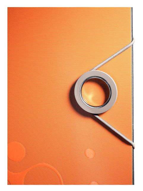 Папка-регистратор Leitz Active Bebop 10480045 A4 65мм оранжевый 180 градусов