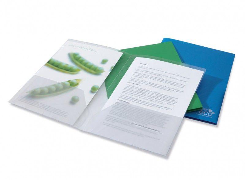 Папка-уголок Rapesco Eco 1103 2 внутр.карман A4 пластик биоразлагаемый ассорти