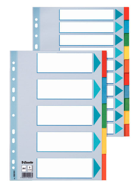 Разделитель индексный Esselte 100191 A4 картон 5 индексов цветные разделы