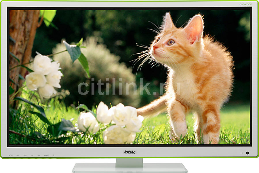 LED телевизор BBK Avokado LEM2495F