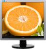 Монитор ЖК AOC Professional e719sda(/01) 17