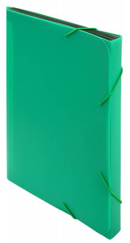 Портфель на резинке Бюрократ -BPR13GRN 13 отдел. A4 пластик 0.7мм зеленый