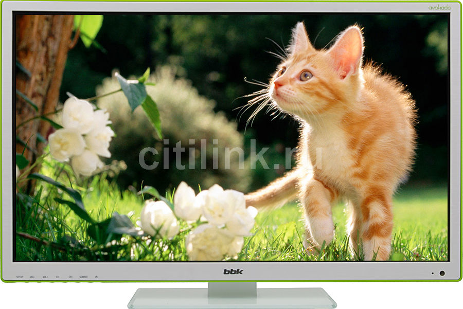 "LED телевизор BBK Avokado 24LEM-5095/FT2C  ""R"", 24"", FULL HD (1080p),  белый"